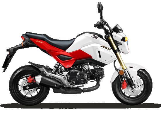 Xe Honda MSX 125cc