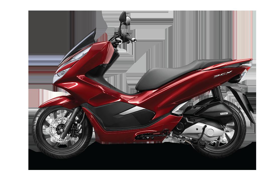 Xe Honda PCX 125cc / 150cc
